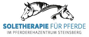 SoleTherapie für Pferde im Reha-Zentrum Steinsberg (bei Limburg an der Lahn zwischen Frankfurt und Köln)